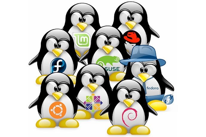 Linux Operating Systems | beanz Magazine |